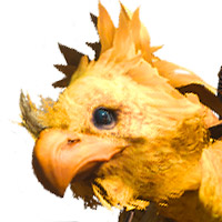 Chocobo Avatar