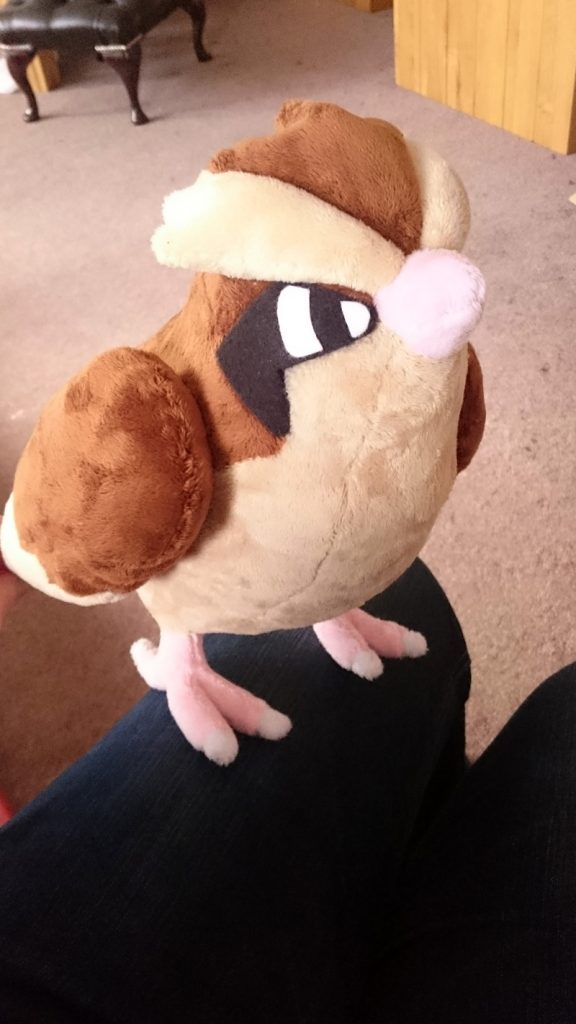 Pidgey plush in Pokemon Go
