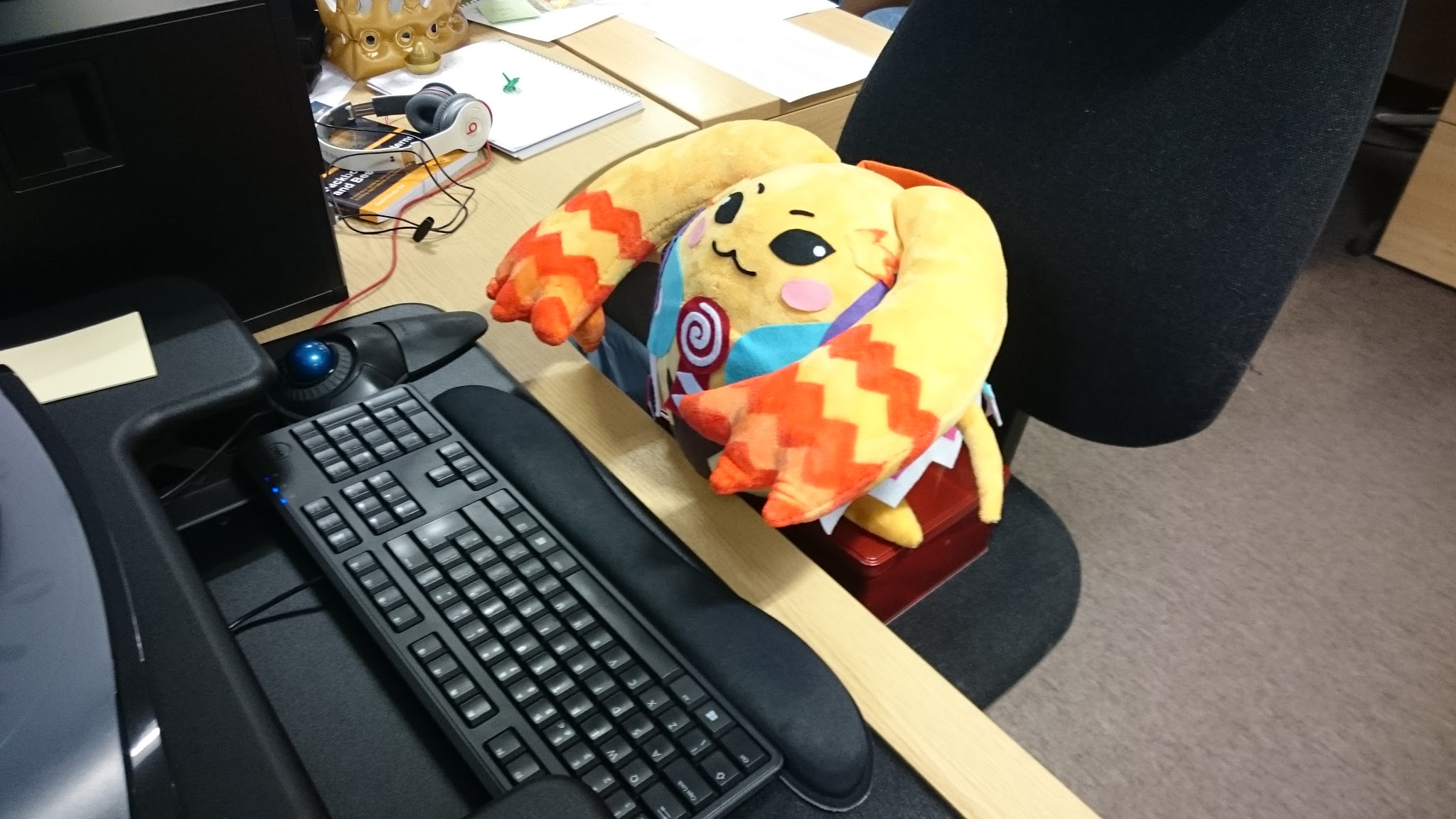 Riki at the office